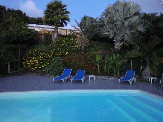 Villa Rose Caraibes : espace piscine