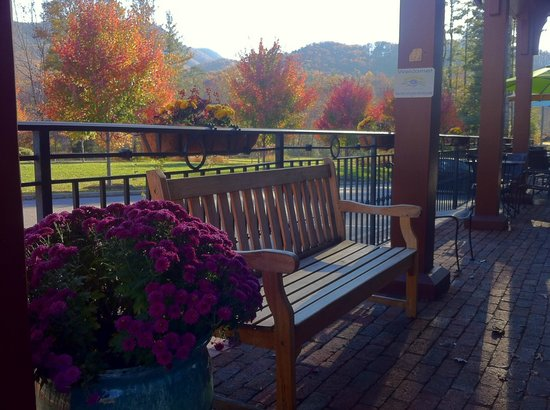 The Morning Glory Cafe: Morning Glory Cafe Fall Patio View!