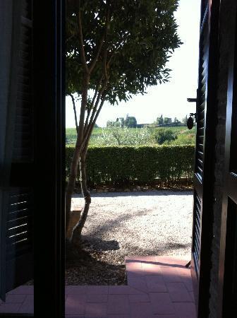 Il Casale del Cotone: From our Terrace door