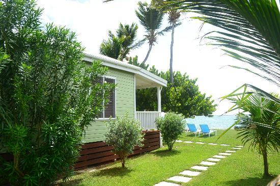 Dutchman's Bay Cottages 사진