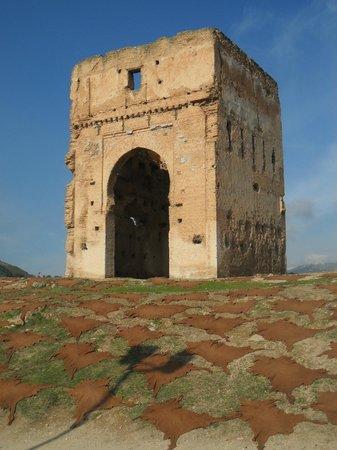 Tombe dei Merenidi