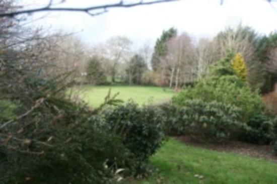 Beech Lodge: Front garden