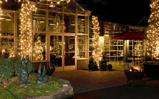High-Hand Conservatory: Lit up for Christmas