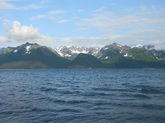 Alaska Saltwater Lodge: The view from our deck - seriously magnificent.