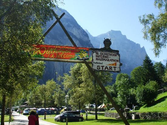 Camping Jungfrau: The campsite