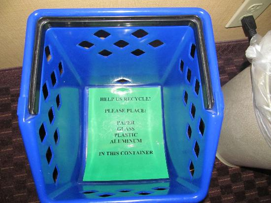 Holiday Inn San Antonio International Airport: Recycling bin