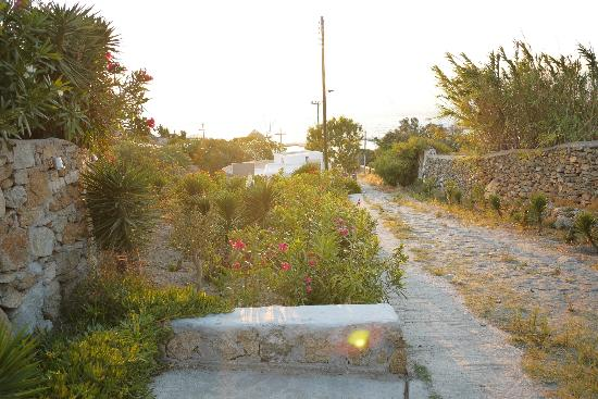 Damianos Hotel: Road leading down to the center of town