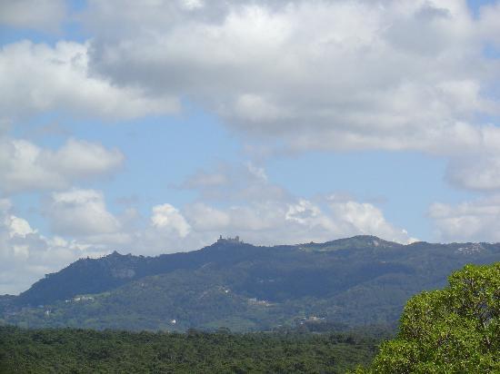 Quinta Beira-Mar: view from back garden