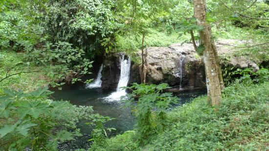 Afu Aau Waterfall : great on a hot day