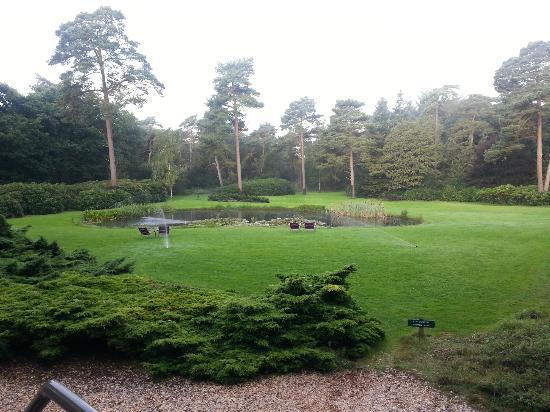 Woudschoten Hotel & Conferentiecentrum: Wonderful spectacular views from the garden, breathtaking