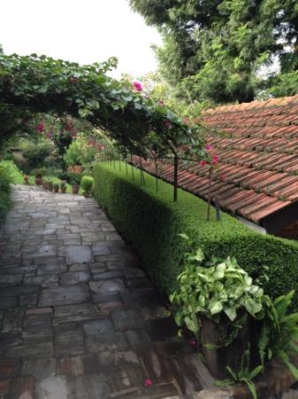 Hotel Sunset View: 日本人の庭師が設計したガーデンがとてもいいです。