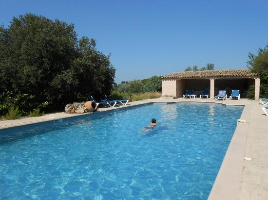 Hotel Le Mas des Collines : piscine