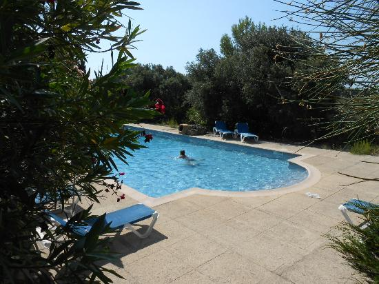 Hotel Le Mas des Collines : vue de la piscine en contrebas de l'hotel