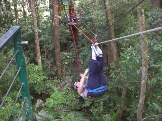 Jungle Tours And Trekking: and upside down!