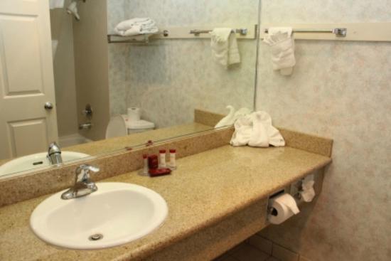 Ramada San Bruno SFO Airport: Nice Bathroom with Details
