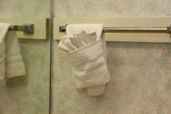 Ramada San Bruno SFO Airport: Towel Animal Artwork