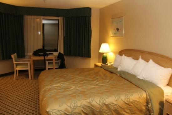 Ramada San Bruno SFO Airport: Spacious Room