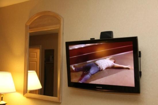 رامادا سان برونو إس إف أو آيربورت: Nice LCD TV