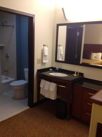 Hyatt Place Garden City : vanity