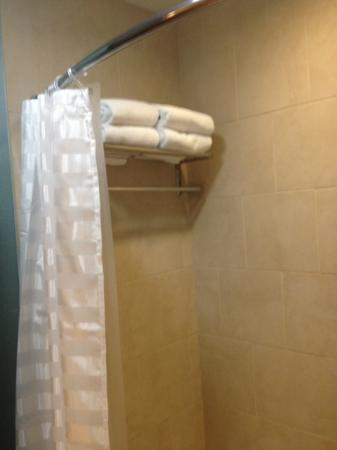 Hyatt Place Garden City: bathroom