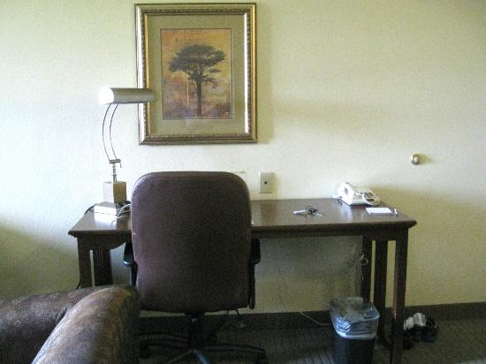 Staybridge Suites Harrisburg: Desk area