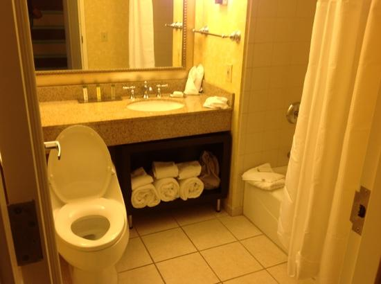 DoubleTree by Hilton Hotel Charlotte - Gateway Village : very clean bathroom