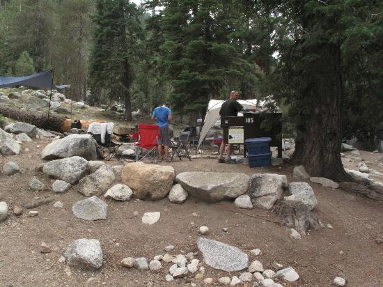 kings canyon national pk dating site The national park service operates all campgrounds in sequoia & kings canyon advance reservations are available for lodgepole and dorst campgrounds all others are first-come, first-served regardless of which sequoia & kings canyon campground you choose, it will be provisioned with picnic tables, fire grills, and bear-proof storage boxes.