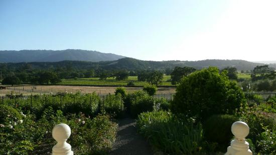 Beltane Ranch: The view from the Beltane porch.