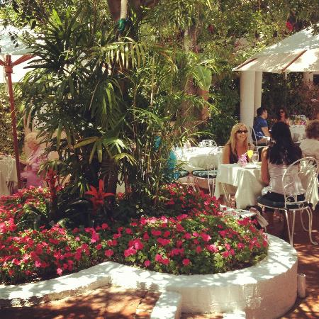 Polo Lounge At The Beverly Hills Hotel Beautiful Garden Outlook