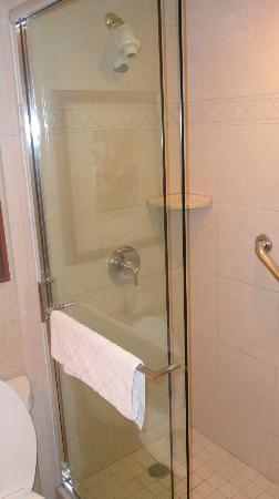 Hilton Lisle / Naperville: Shower