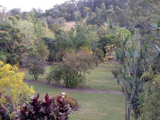 Eumundi Rise Bed & Breakfast: View of the gardens from the verandah