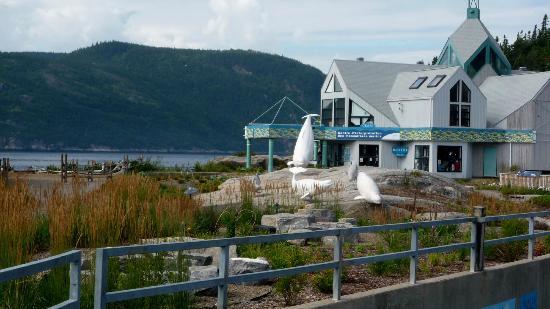 Excursions en Mer Baie de Tadoussac Day Tours : Centre d'interprétation des baleines,Tadoussac