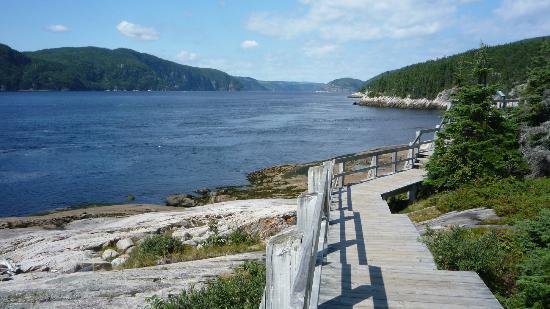 Excursions en Mer Baie de Tadoussac Day Tours : Fjord du Saguenay,Tadoussac