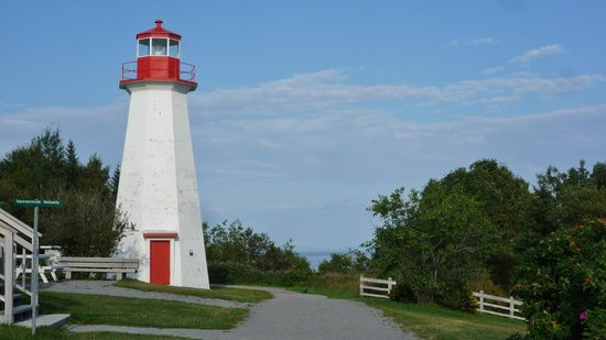 Excursions en Mer Baie de Tadoussac Day Tours
