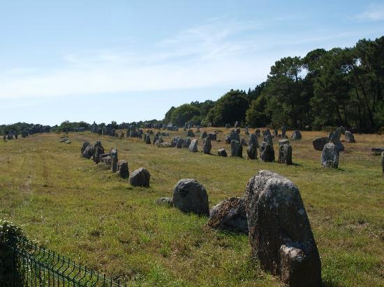 Musée de la Préhistoire : カルナックノ 並列する巨石群