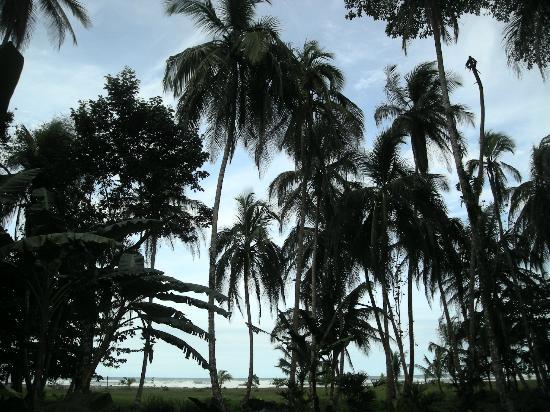 Hotel La Diosa : Walking to the Beach!