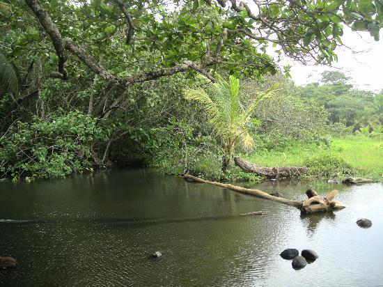 Hotel La Diosa: Romantic Lagoon behind La Diosa