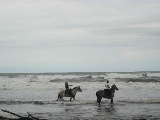 Hotel La Diosa: Beach Fun!