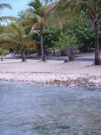 Hotel on the Cay: Beach of hotel
