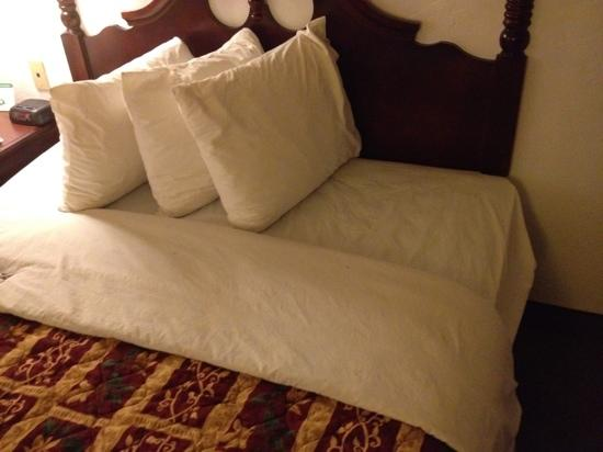 Days Inn Camarillo - Ventura: bed that has dead bugs