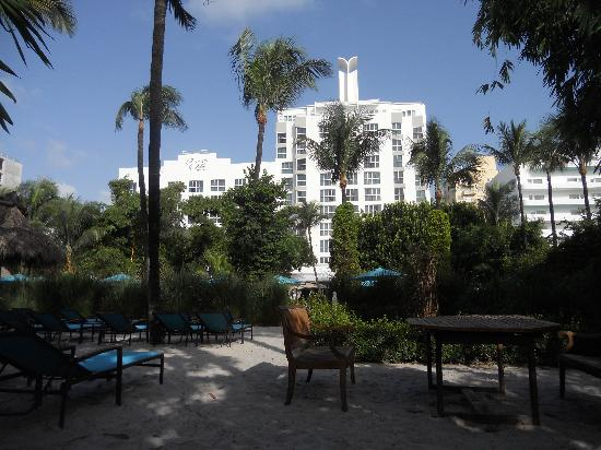 The Palms Hotel & Spa: vista hotel dal giardino