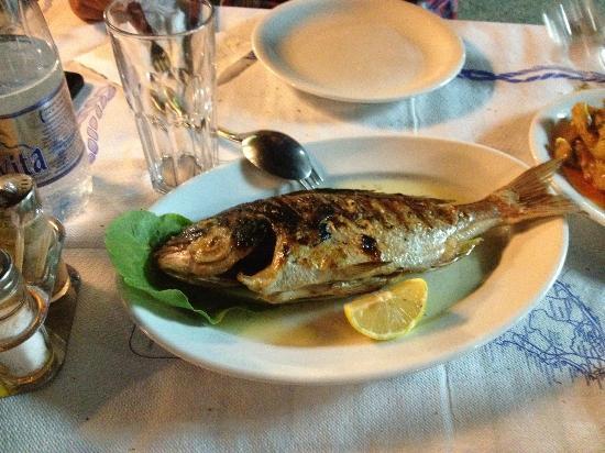 Kapetanios Seafood Restaurant: buonissimo