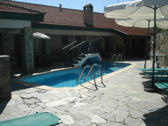 Themis House : Pool
