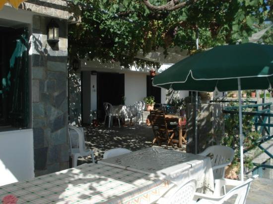 Themis House : Patio