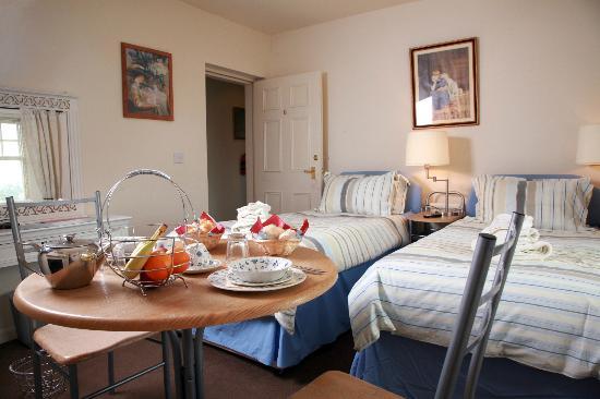 Beverley Guesthouse: Room 6 - Twin Standard