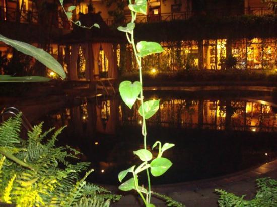 Sukajadi Hotel: the pool at night