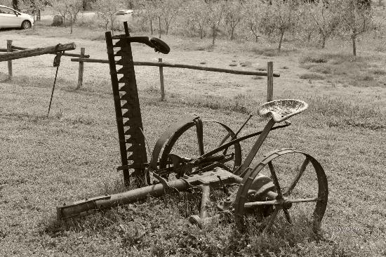 Agriturismo Il Vecchio Maneggio: attrezzi del passato