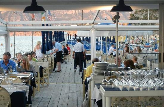 Foto ristorante delfino picture of ristorante bagni delfino
