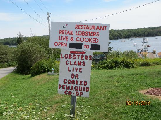 Pemaquid Fisherman's Co-Op: this way to the lobsters