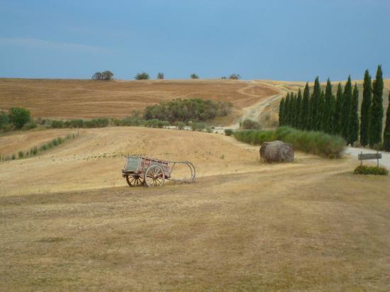 Agriturismo Il Rigo照片